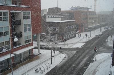 winter_in_apeldoorn2.jpg